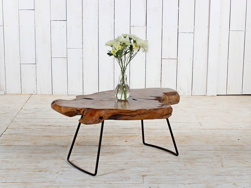 Organic Furniture Teak-Root-Coffee-Table-2